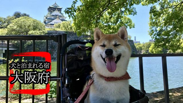 大阪犬バナー