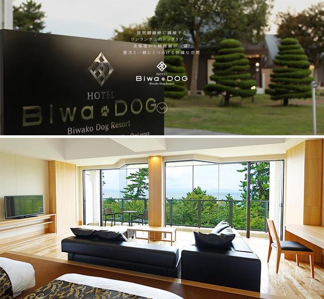 BIWA-DOG