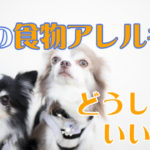 """<span class=""""title"""">【犬の食物アレルギー】が起きる理由!知ってて良かった基礎知識</span>"""